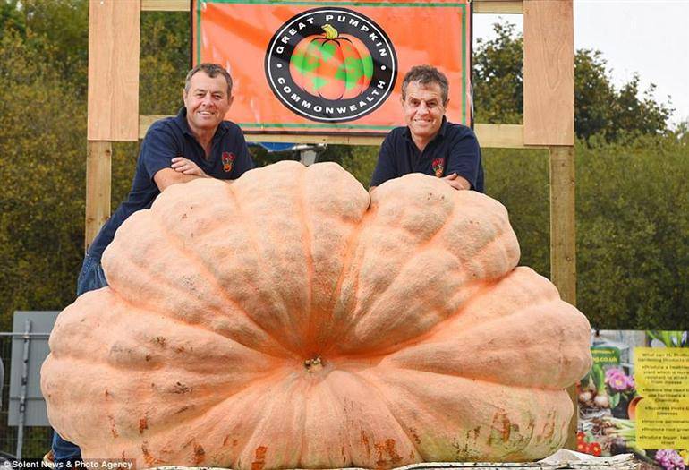 worlds-largest-pumpkin