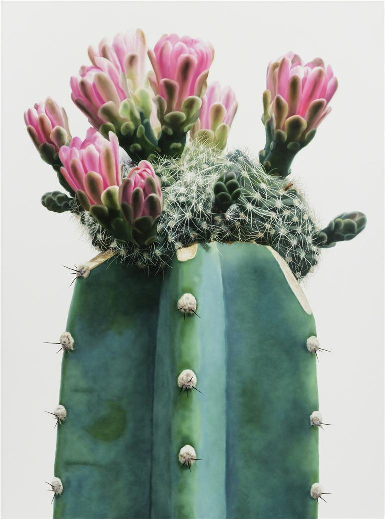towering-hyperrealistic-cactus-paintings