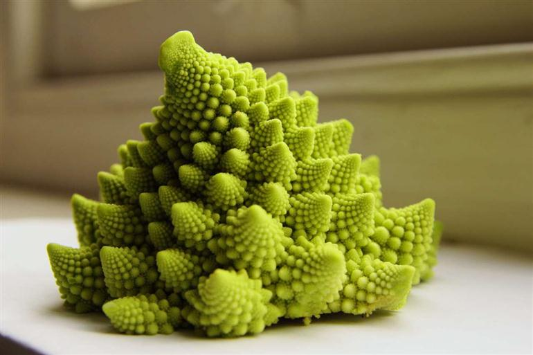 romanesco-broccoli