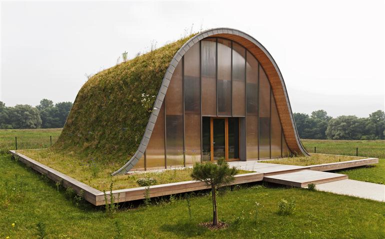 single-storey-house-cover-with-grass