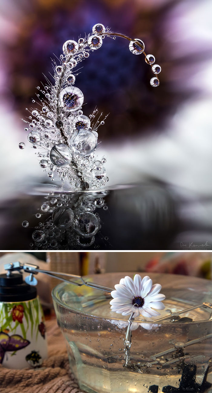 water-droplet-photos-don-komarechka