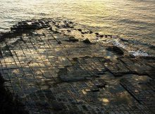 tessellated-pavement